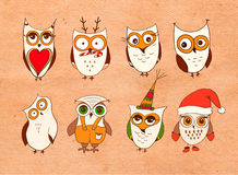 Jogo de corujas bonitos Vector corujas dos desenhos animados e pássaros dos filhotes de coruja no fundo branco Imagem de Stock