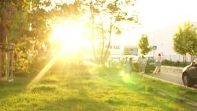 Jogo de crianças alegre no parque da cidade Brilho do sol de ajuste, coelho ensolarado, conceito feliz da infância, crianças vídeos de arquivo