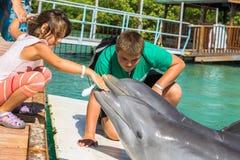Jogo de crianças com golfinhos Fotografia de Stock Royalty Free