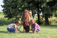 Jogo de crianças com cavalo do pônei Fotos de Stock Royalty Free