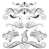 Jogo de elementos florais do projeto Fotografia de Stock Royalty Free