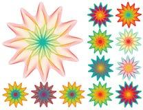 Jogo de elementos florais para seu projeto no branco Ilustração Stock