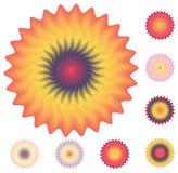 Jogo de elementos florais para seu projeto no branco Ilustração do Vetor