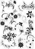 Jogo de elementos floral Imagem de Stock