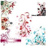 Jogo de elementos floral Fotografia de Stock