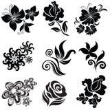 Jogo de elementos pretos do projeto da flor Foto de Stock