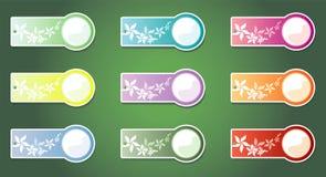 Jogo de etiquetas da cor, em um fundo verde. Vetor Imagens de Stock Royalty Free