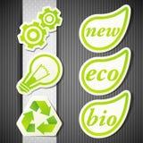 Jogo de etiquetas do eco Imagem de Stock Royalty Free