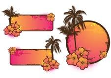Jogo de etiquetas tropicais Fotografia de Stock