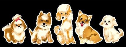 Jogo de filhotes de cachorro bonitos Animais de estimação home isolados no fundo branco Vec Imagens de Stock