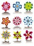 Jogo de flores coloridas Fotografia de Stock Royalty Free
