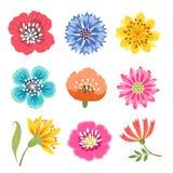 Jogo de flores coloridas ilustração royalty free