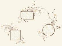 Jogo de frames florais Imagens de Stock