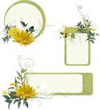 Jogo de frames florais do grunge Imagens de Stock Royalty Free