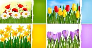 Jogo de fundos da natureza com mola colorida e ilustração royalty free