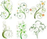 Jogo de fundos florais Fotografia de Stock Royalty Free