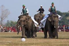 Jogo de futebol - festival do elefante, Chitwan 2013, Nepal Imagem de Stock