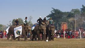 Jogo de futebol - festival do elefante, Chitwan 2013, Nepal Imagens de Stock