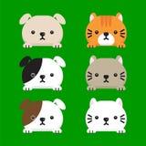 Jogo de gatos bonitos Imagem de Stock