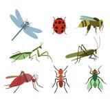 Jogo de insetos do vetor Imagens de Stock Royalty Free