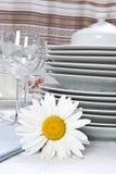 Jogo de jantar com camomila Imagens de Stock Royalty Free