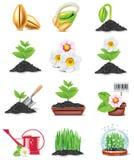 Jogo de jardinagem do ícone do vetor Imagens de Stock