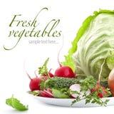 Jogo de legumes frescos Fotografia de Stock Royalty Free