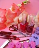 Jogo de Manicure Fotografia de Stock Royalty Free