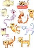 Jogo de onze gatos diferentes ilustração stock