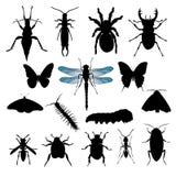 Jogo de silhuetas do inseto ilustração do vetor