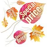 Jogo de Tag da venda do outono Eps 10 Fotografia de Stock Royalty Free