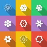 Jogo de teclas florais Imagens de Stock
