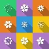 Jogo de teclas florais Fotos de Stock Royalty Free