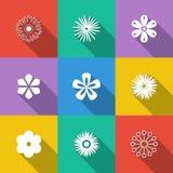 Jogo de teclas florais Imagem de Stock Royalty Free