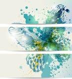 Jogo de três bandeiras com borboletas e sumário Imagem de Stock Royalty Free