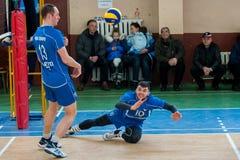 Jogo de voleibol Fotos de Stock Royalty Free