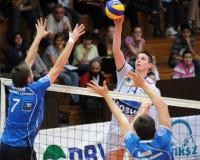 Jogo de voleibol de Kaposvar - de Innsbruck Foto de Stock Royalty Free
