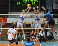 Jogo de voleibol de Kaposvar - de Innsbruck Fotos de Stock Royalty Free