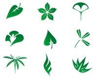 Jogo do ícone das folhas ilustração stock