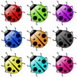 Jogo do ícone do Ladybug Fotografia de Stock
