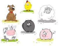 Jogo do animal doméstico Fotografia de Stock Royalty Free