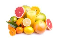 Jogo do citrino e do suco diferentes Imagem de Stock