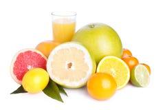 Jogo do citrino e do suco diferentes Fotografia de Stock