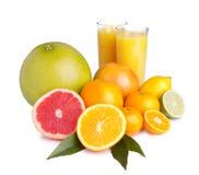 Jogo do citrino e do suco diferentes Imagem de Stock Royalty Free