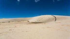 Jogo do deserto Imagem de Stock