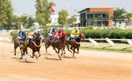 Jogo do esporte da corrida de cavalos Imagens de Stock