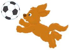 Jogo do filhote de cachorro Imagem de Stock