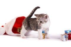 Jogo do gatinho com presentes Fotografia de Stock Royalty Free