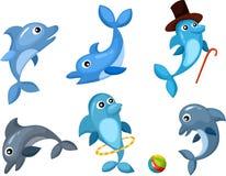 Jogo do golfinho Fotografia de Stock Royalty Free