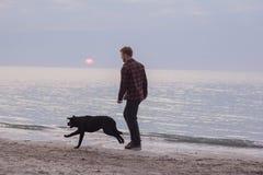 Jogo do homem com cão Foto de Stock Royalty Free